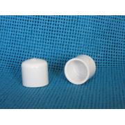 Cap Slip Sch 40 PVC
